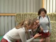 schoolgirls-milking-cock (5)